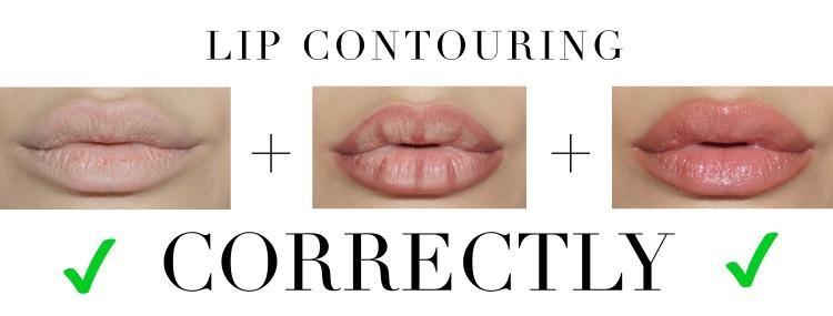 lip contour correct.jpg